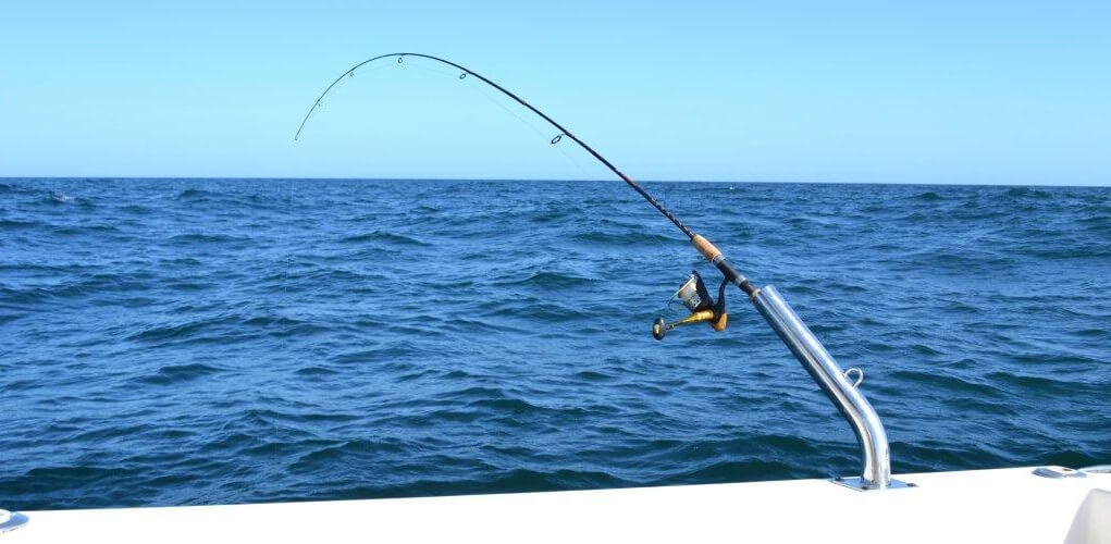 Best Fishing Rod and Reel
