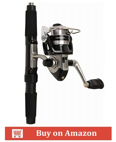 10. Daiwa Mini System Ultralight Combo