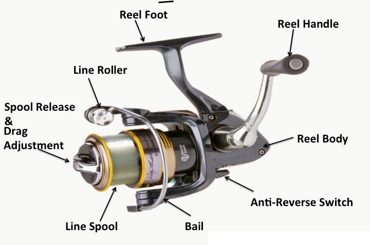 Drag System of spinning reel