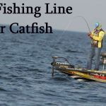 Best Fishing Line For Catfish