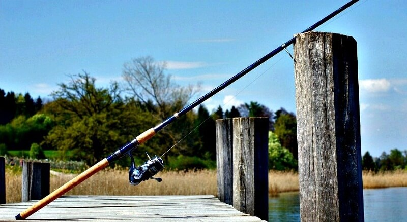 Best Fishing Rod and Reel Combos