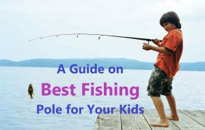 Best Fishing Pole for Kids