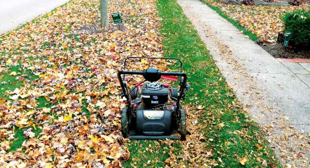 Best Lawn Mower for Mulching Leave