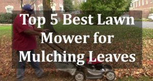 Best Lawn Mower for Mulching Leaves