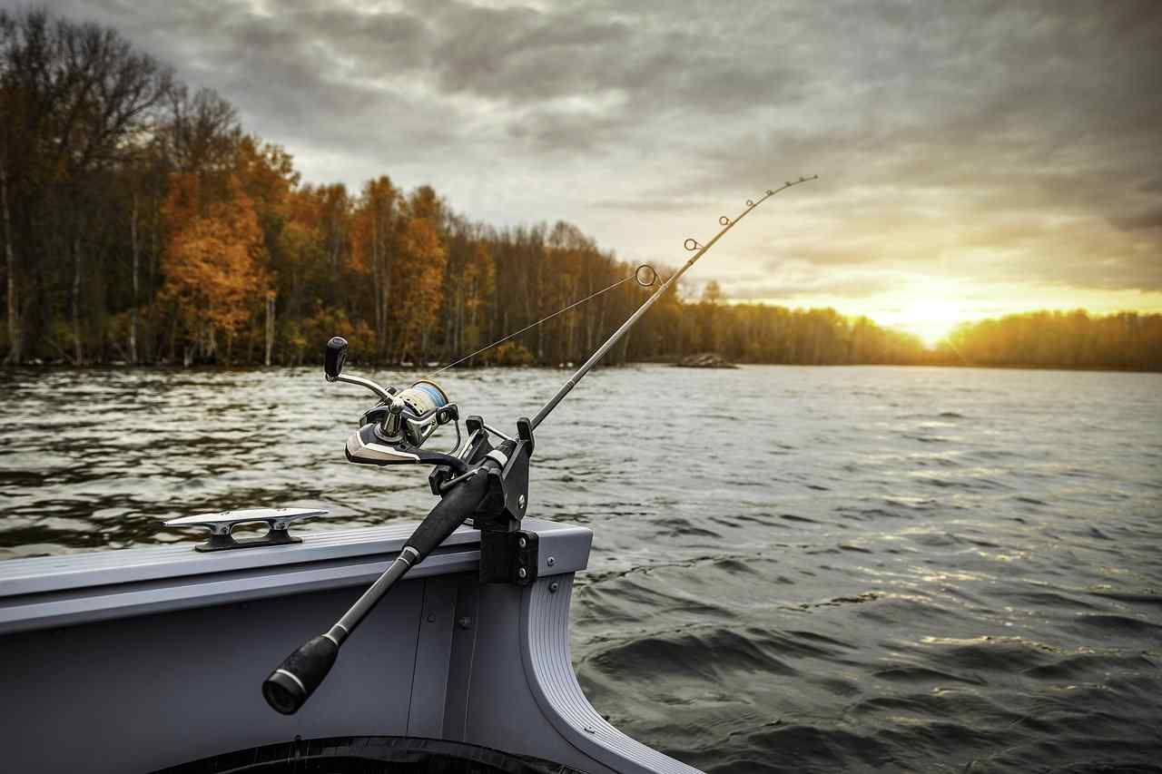 Best Spinning Rods for Bass
