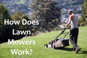 How Does Lawn Mowers work