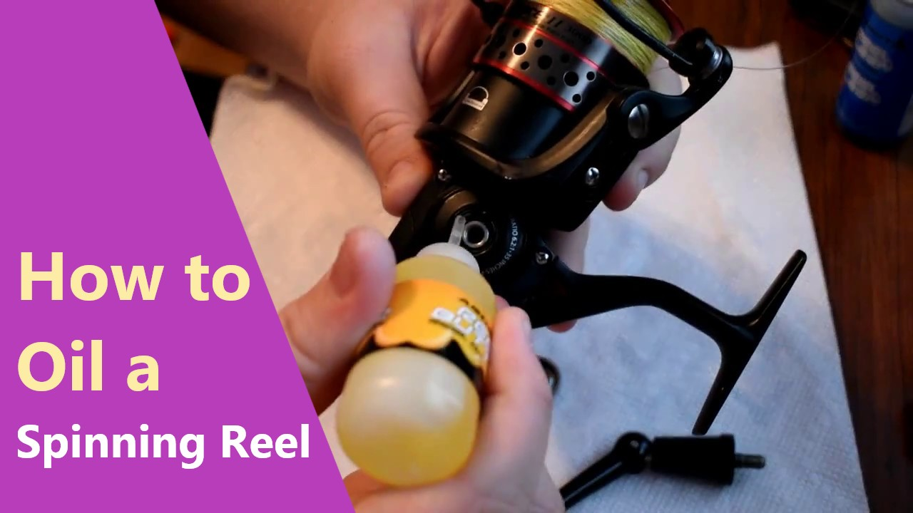 How to Oil a Spinning Reel – A Beginner's Guide