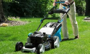 best lawn mowers for thick grass